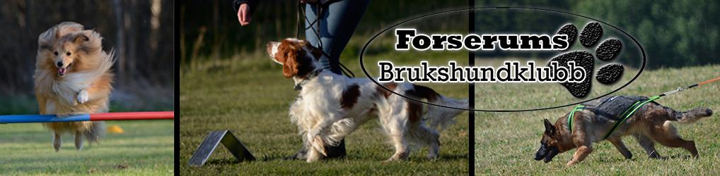 Forserums Brukshundklubb